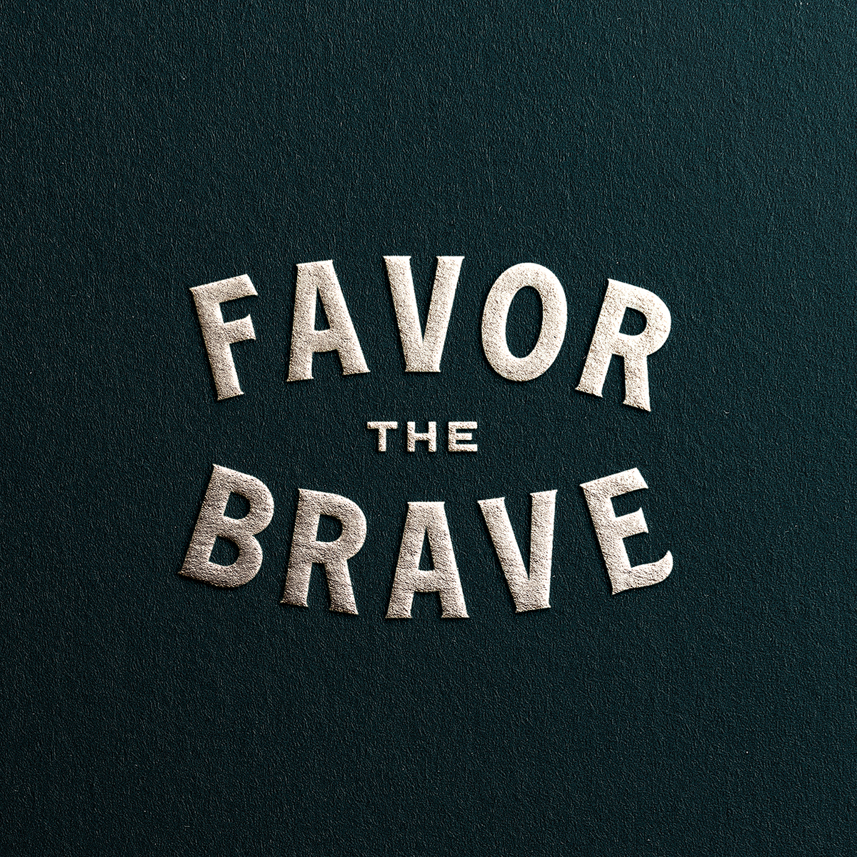 Favor the Brave on LogoLounge
