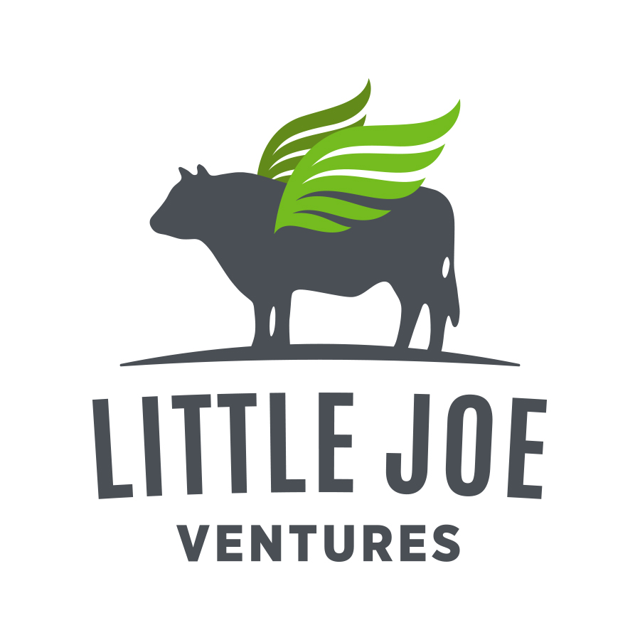 LITTLE JOE VENTURES