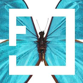 FORMFARM ® CREATIVE