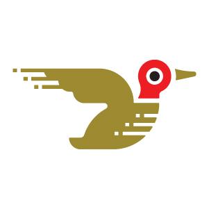 8-Bit Duck