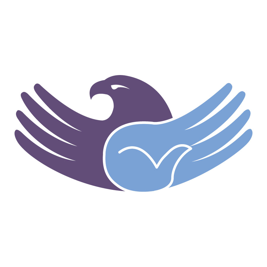 Eagle Hand Wings