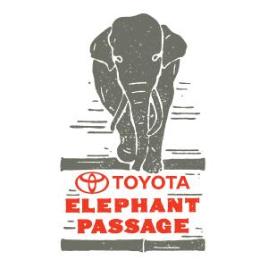 Toyota Elephant Passage 2