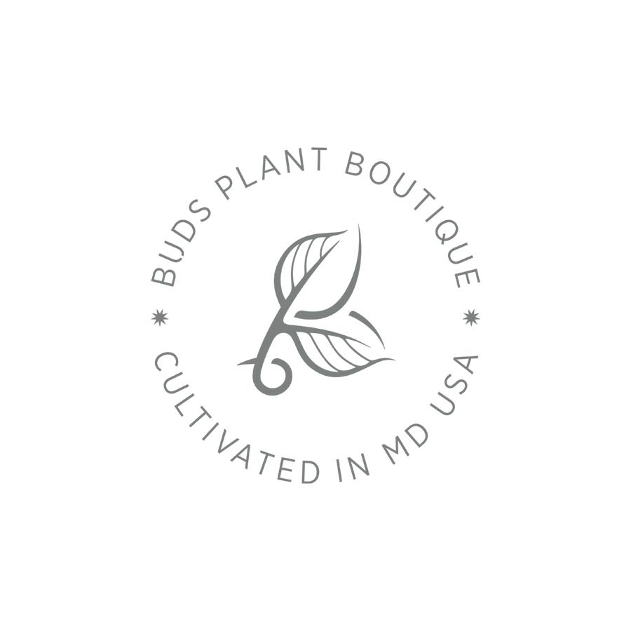 Buds Cultivated MD Seal logo design by logo designer Lisa Gorham Creative