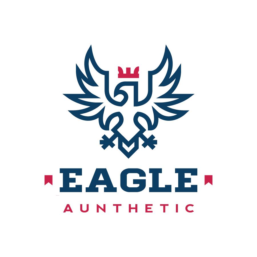 Aunthetic Eagle Phoenix