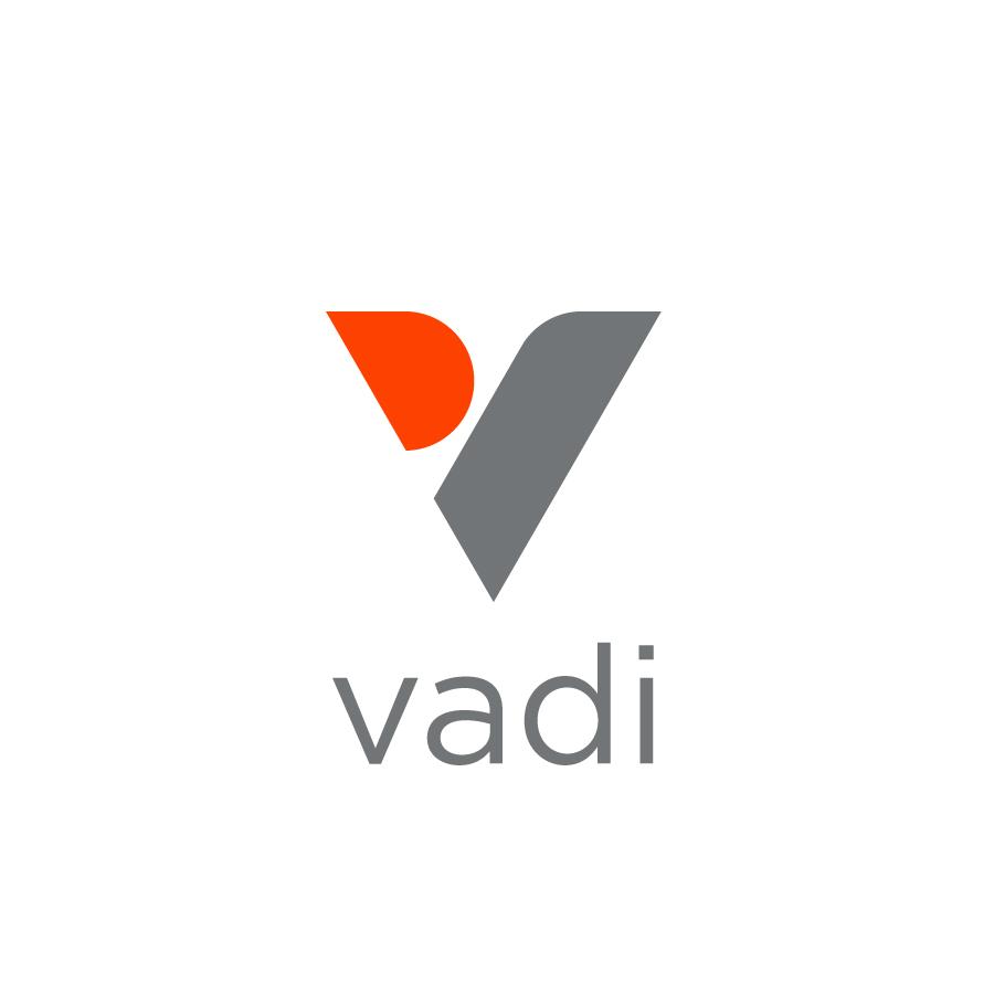 Vadi - V Logo