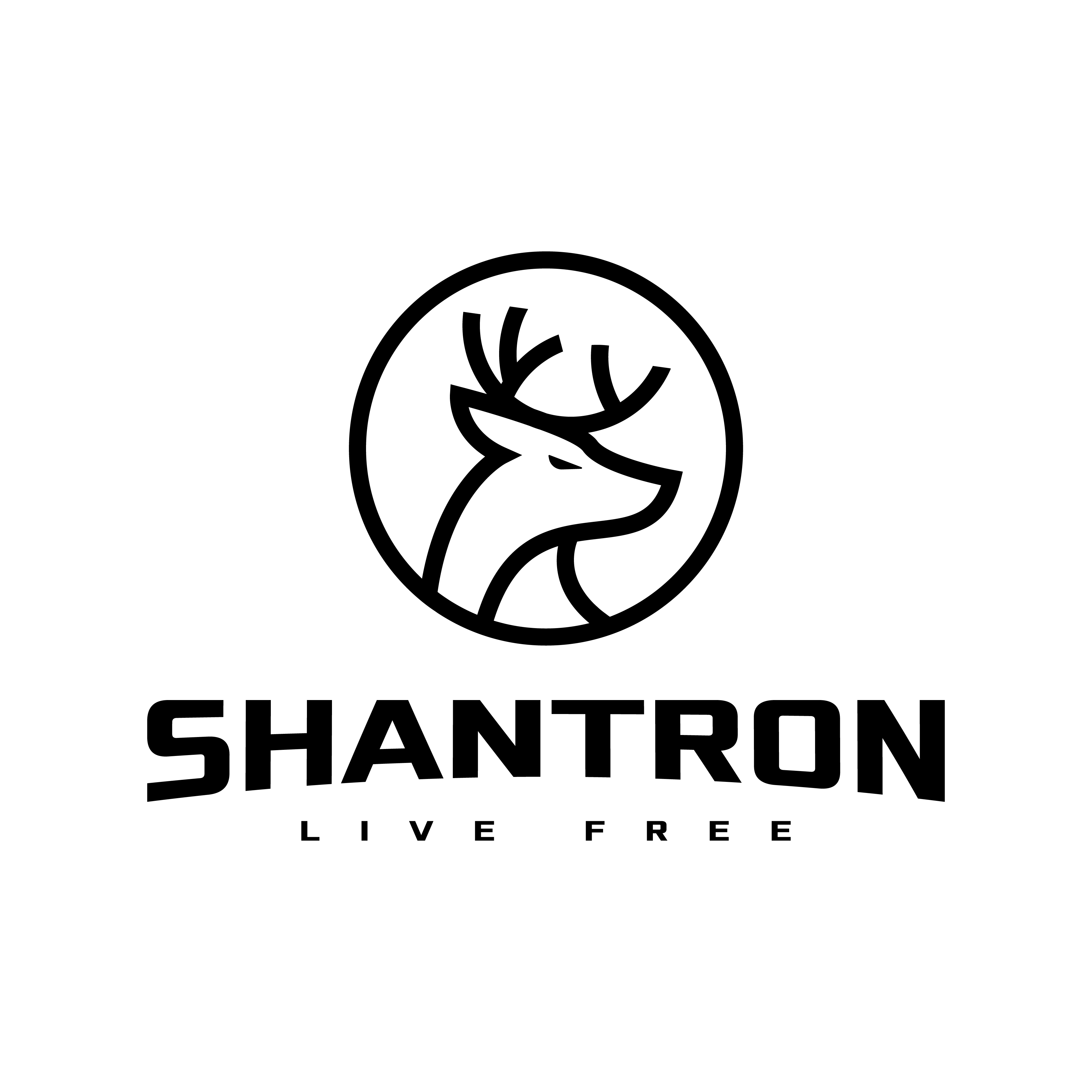 SHANTRON logo design by logo designer Radu Moraru