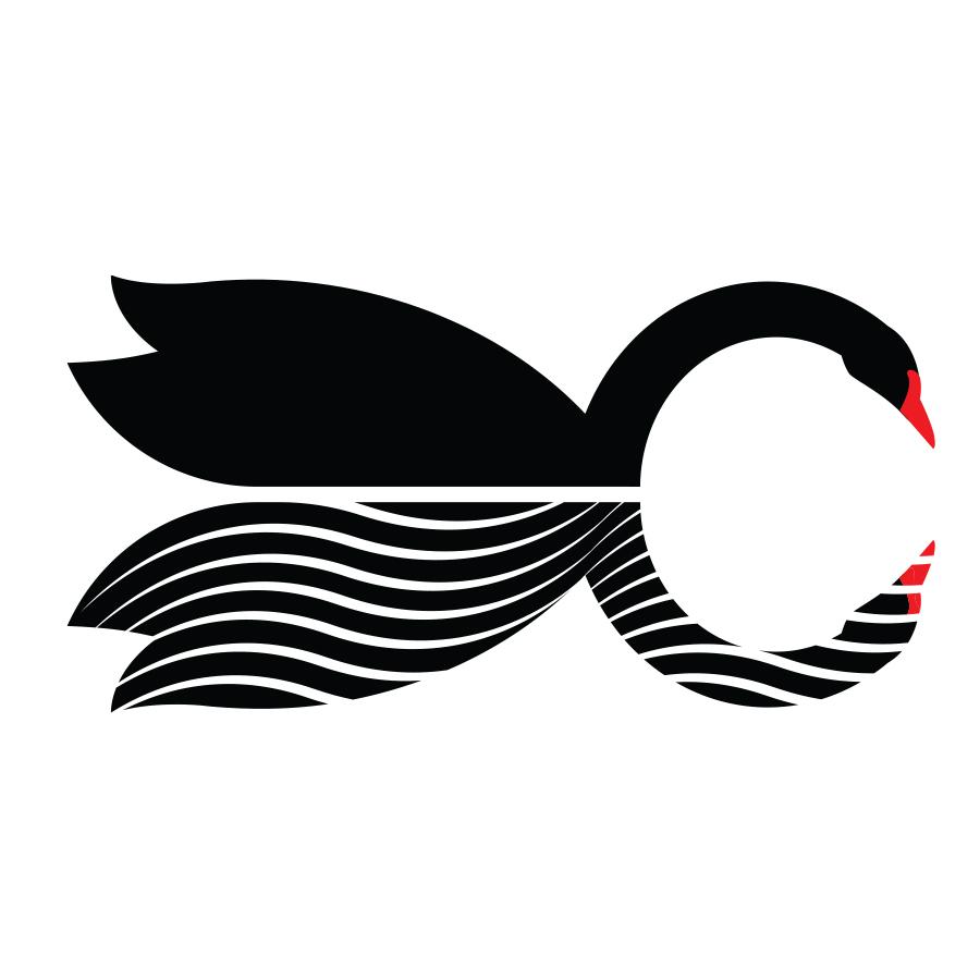Cygnus Advisory logo