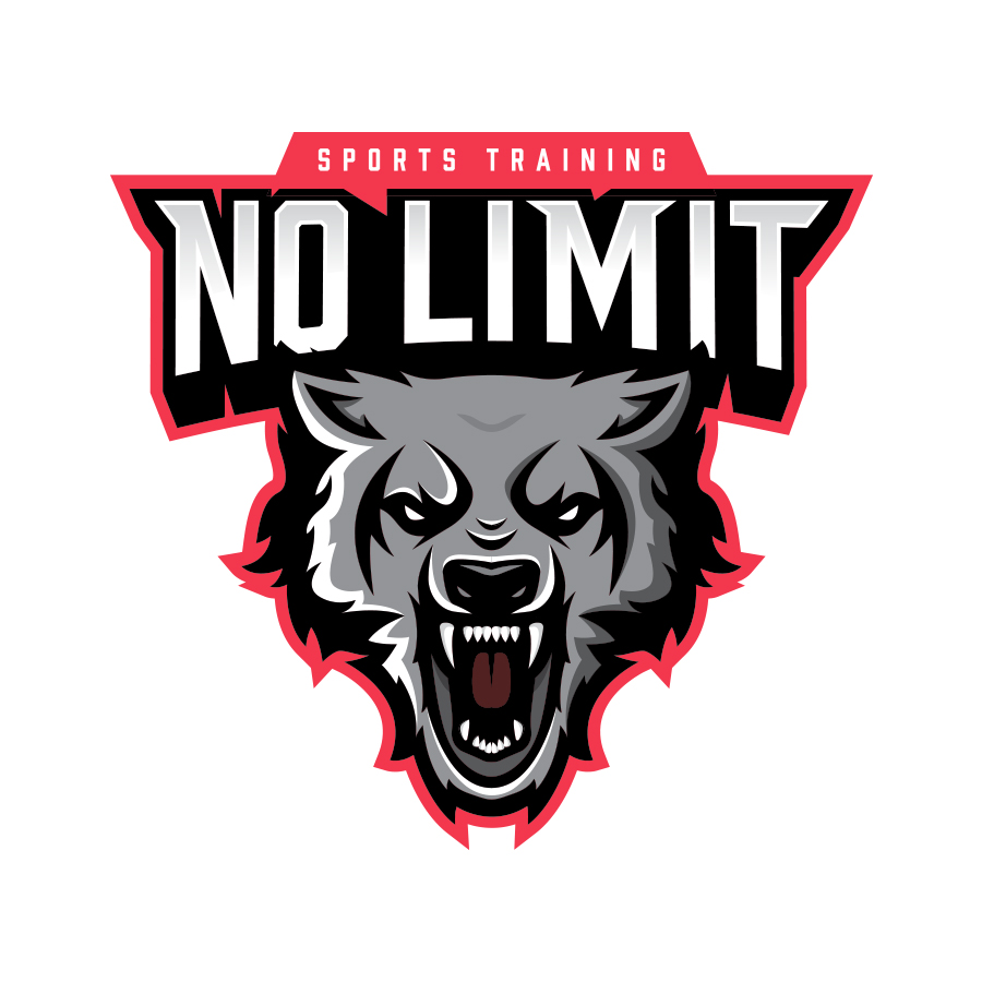 No Limit Sports Training