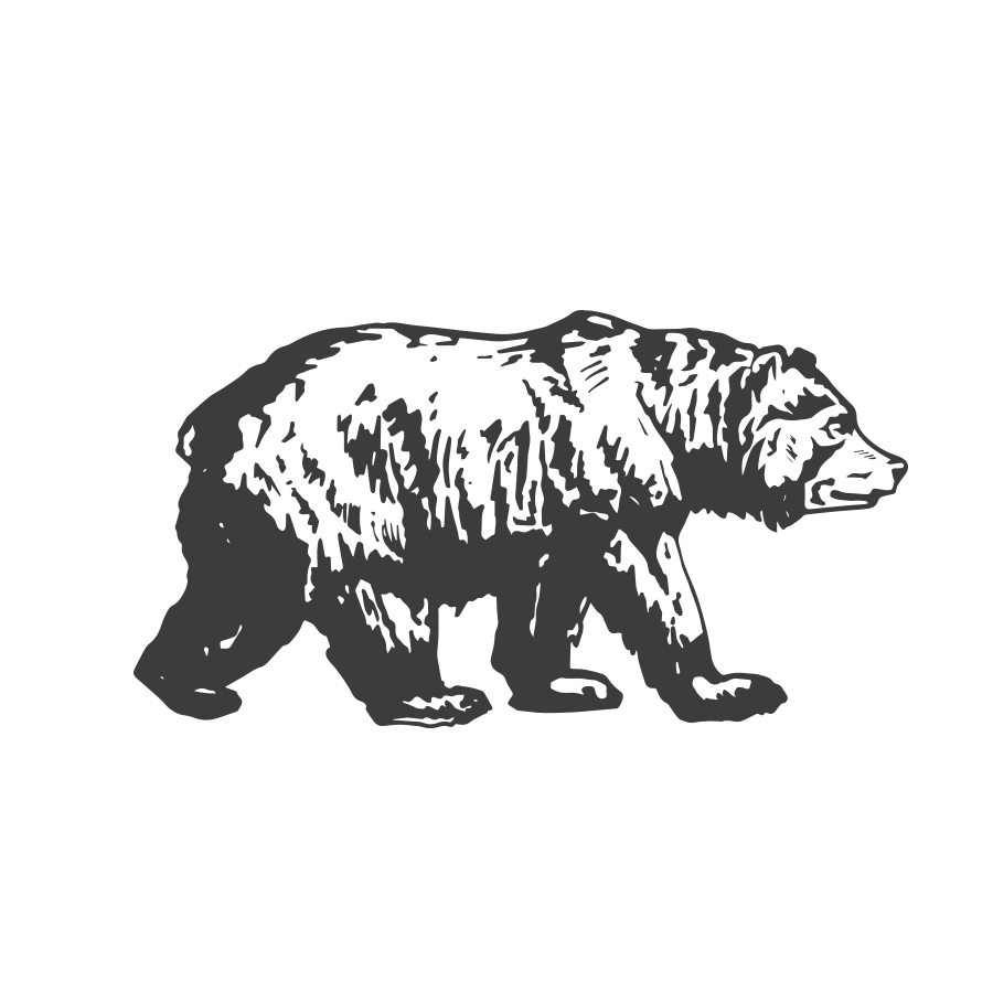 Zoffa Bear logo design by logo designer Tom Walker