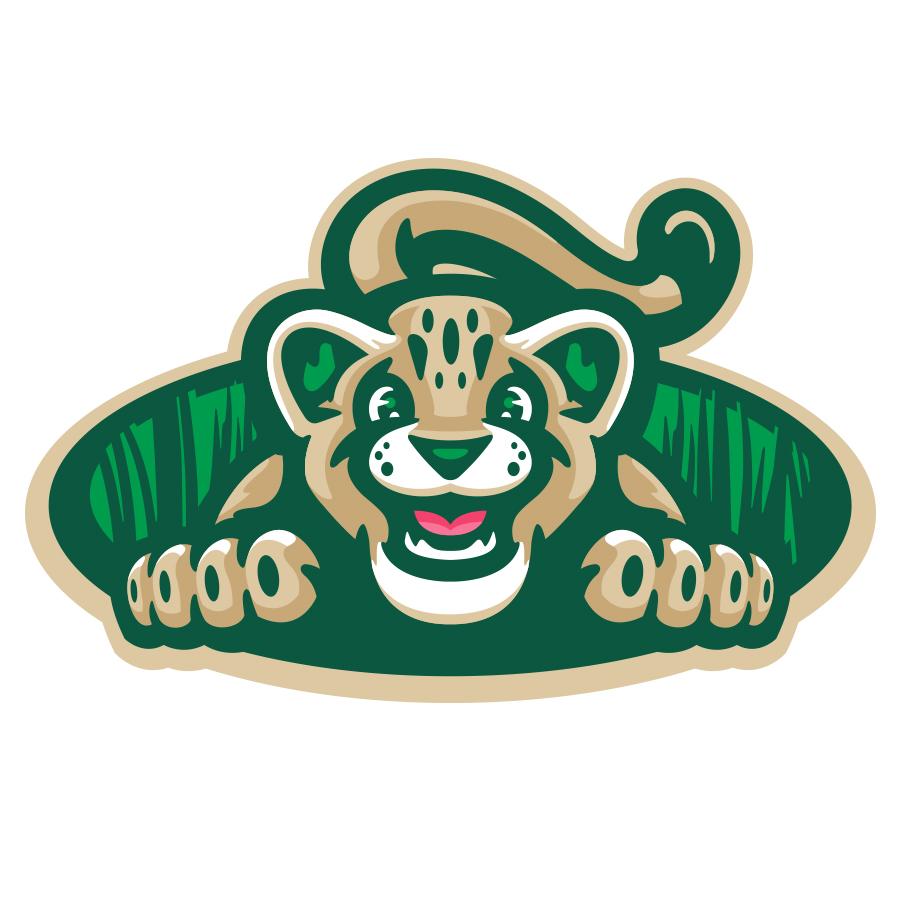 Kilmer Cougars