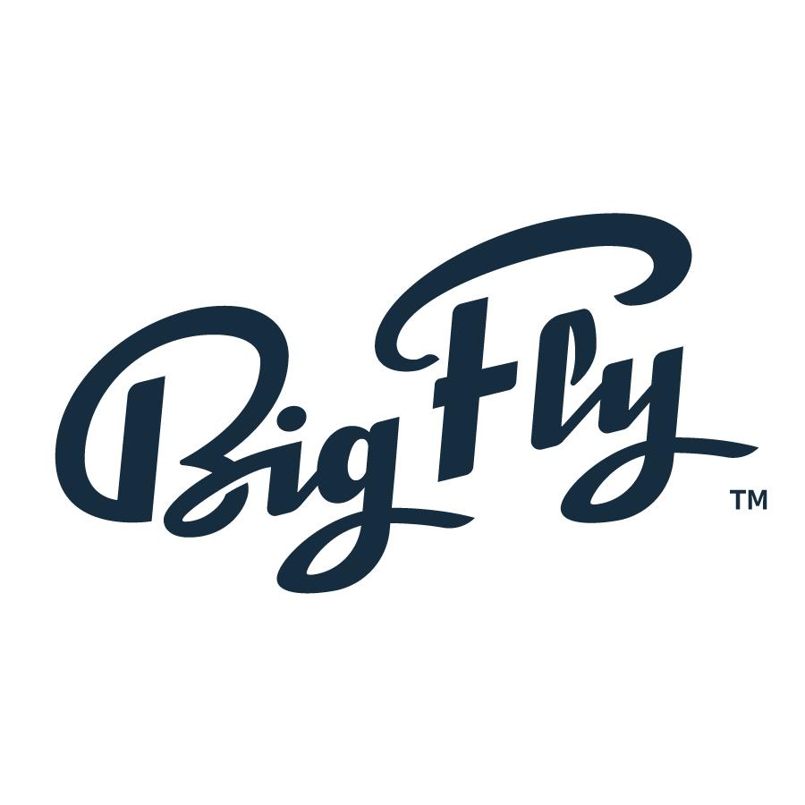 BigFly_Script_Logo