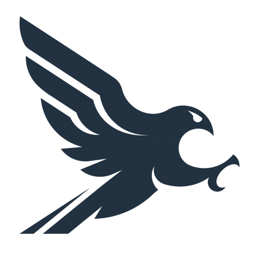 Falconer rapid attack logo-