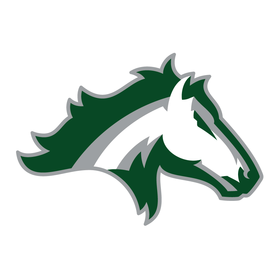 Kennesaw Mountain HS Mustangs