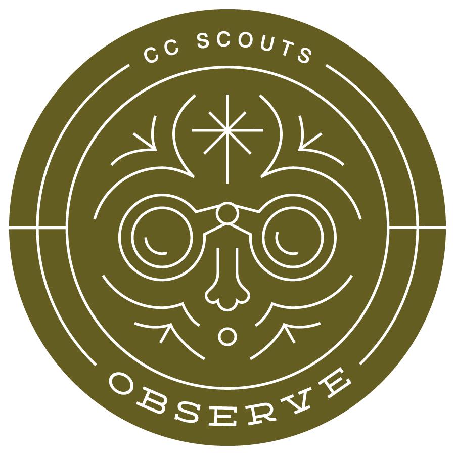 CC Scouts - Observe