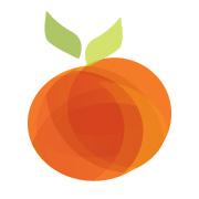 Summerfruit logo design by logo designer Blue Storm Design