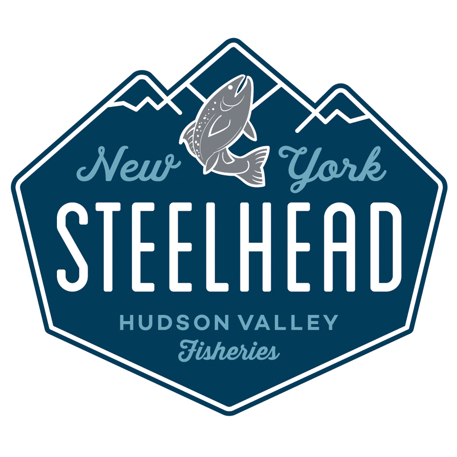 New York Steelhead logo design by logo designer Taylor Design for your inspiration and for the worlds largest logo competition