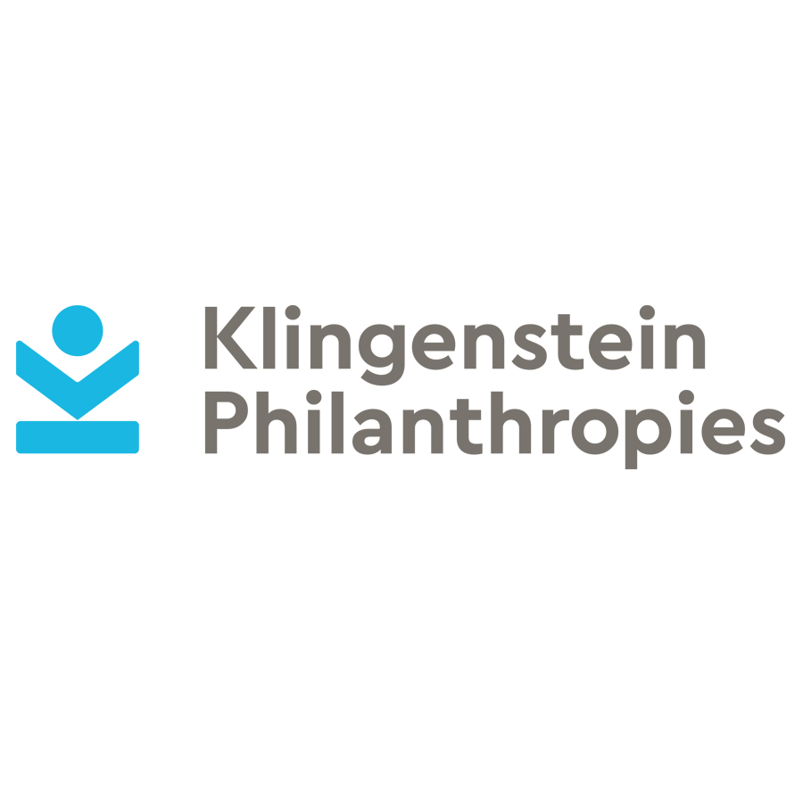 Klingenstein  logo design by logo designer Taylor Design for your inspiration and for the worlds largest logo competition