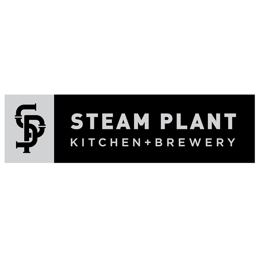 steam29