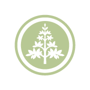 Lifestyle Financial Services Symbol logo design by logo designer See&Co