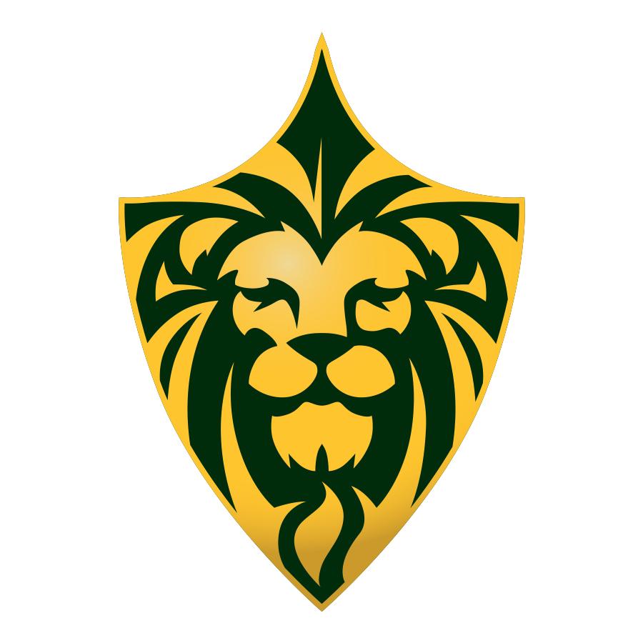 LionsFC logo design by logo designer Causality