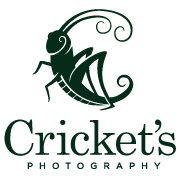 Cricket's Photography